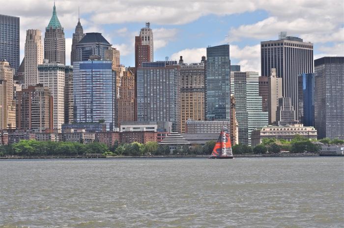 Safran na tle Manhattanu. / Fot. M. Marczewski